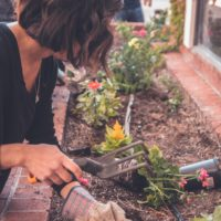 Person Working in a garden